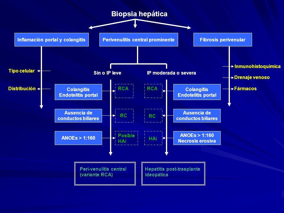 Biopsia hepática Inflamación portal y colangitisPerivenulitis central prominenteFibrosis perivenular Tipo celular Distribución Inmunohistoquímica Dren