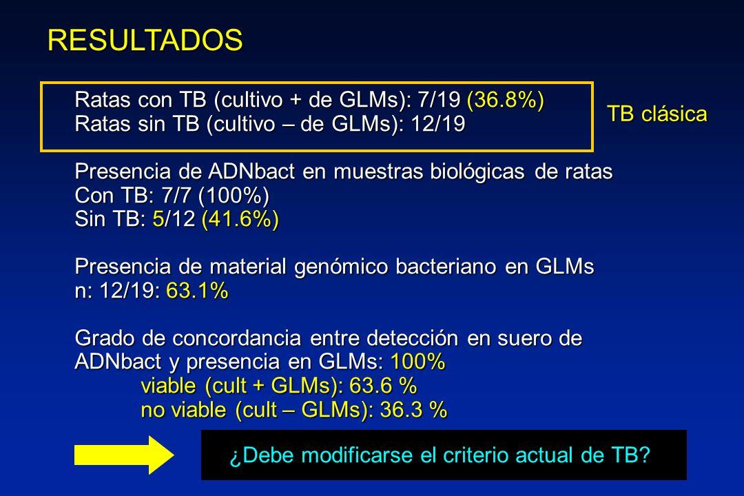 RESULTADOS Ratas con TB (cultivo + de GLMs): 7/19 (36.8%) Ratas sin TB (cultivo – de GLMs): 12/19 Presencia de ADNbact en muestras biológicas de ratas