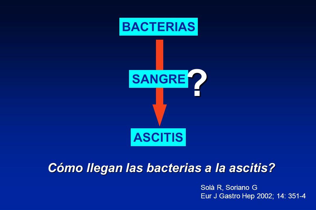 Cómo llegan las bacterias a la ascitis? Solà R, Soriano G Eur J Gastro Hep 2002; 14: 351-4 BACTERIAS ASCITIS SANGRE ?