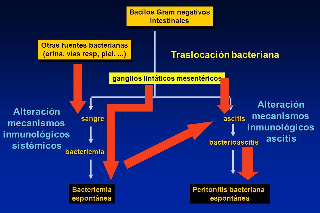 Bacilos Gram negativos intestinales Bacilos Gram negativos intestinales sangreascitis bacteriemia Bacteriemia espontánea bacterioascitis Peritonitis b