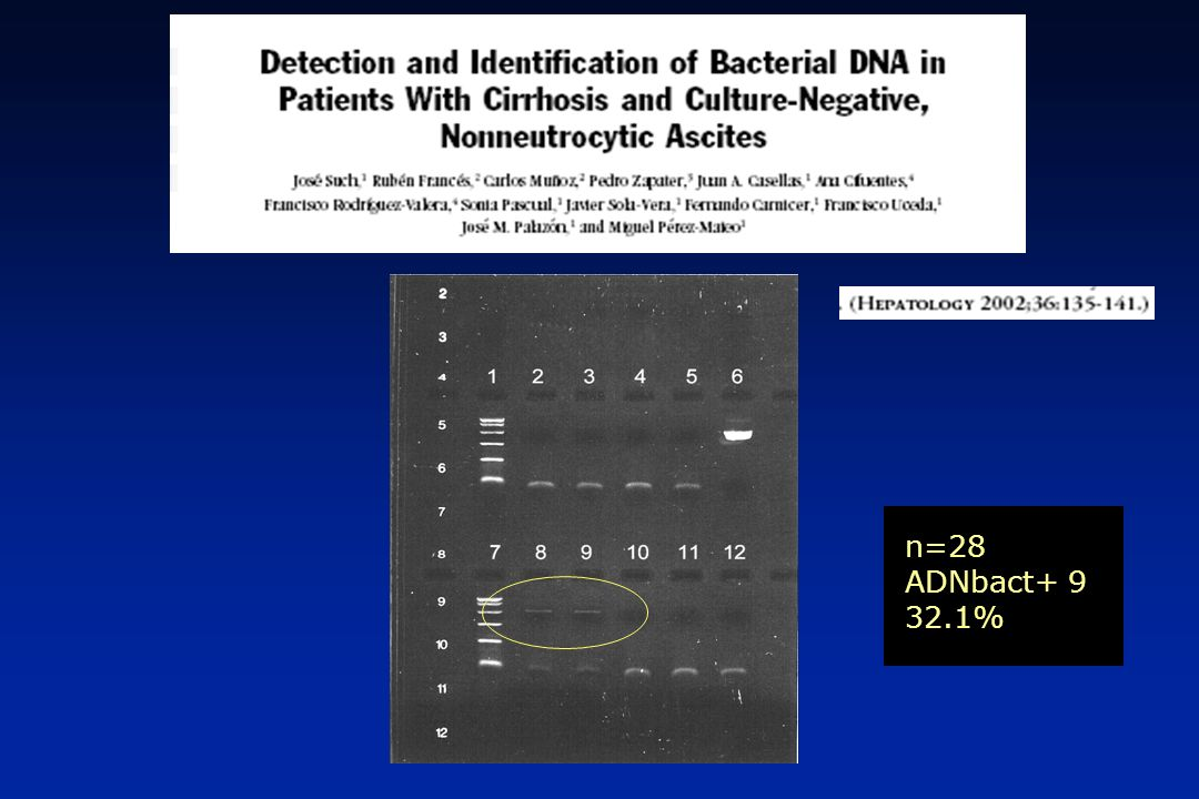 0.0050.00100.00150.00200.00 DIAS 0.0 0.2 0.4 0.6 0.8 1.0 Supervivencia acumulada PCR (bactDNA) NEGATIVO POSITIVO P=0.07 8/78 9/45 30d P=0.002 AEEH 2006N N Exitus P bactDNA (+) 45 6 (13%) 0.002 bactDNA (-) 78 0 (0%) PRONÓSTICO ASOCIADO A LA PRESENCIA DE ADN BACTERIANO: ¿ESTÁ INDICADA LA PROFILAXIS?