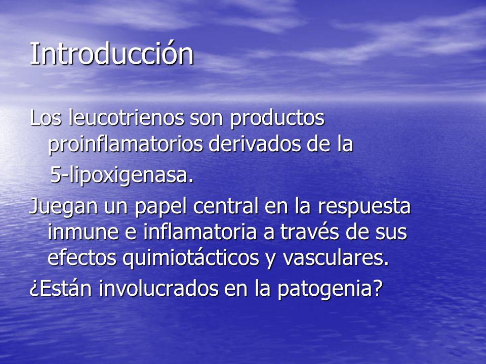 Introducción Los leucotrienos son productos proinflamatorios derivados de la 5-lipoxigenasa. 5-lipoxigenasa. Juegan un papel central en la respuesta i