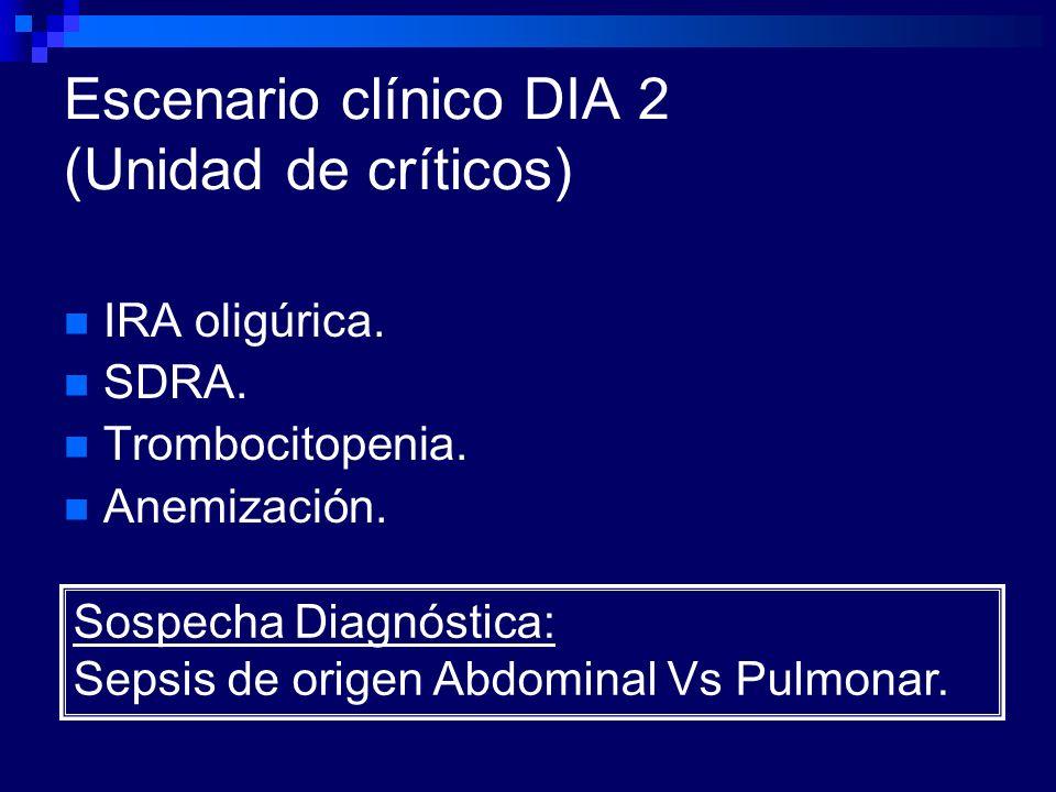 Escenario clínico DIA 2 (Unidad de críticos) IRA oligúrica. SDRA. Trombocitopenia. Anemización. Sospecha Diagnóstica: Sepsis de origen Abdominal Vs Pu