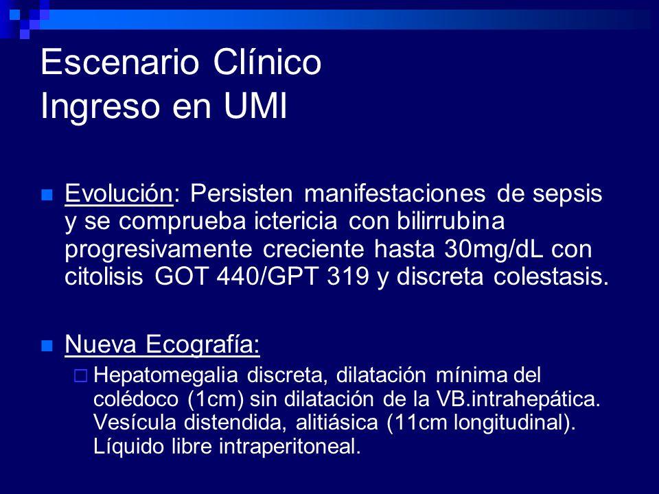 Escenario Clínico Ingreso en UMI Evolución: Persisten manifestaciones de sepsis y se comprueba ictericia con bilirrubina progresivamente creciente has