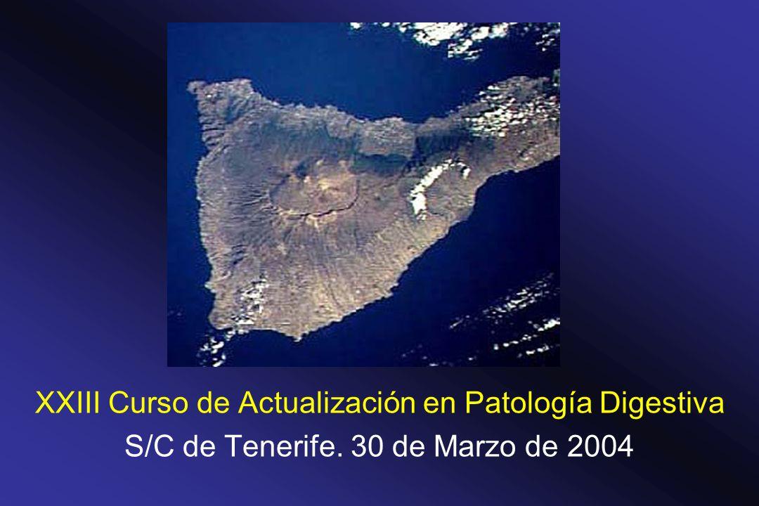 XXIII Curso de Actualización en Patología Digestiva S/C de Tenerife. 30 de Marzo de 2004