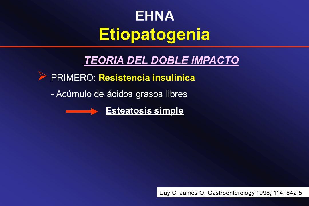 EHNA Etiopatogenia TEORIA DEL DOBLE IMPACTO PRIMERO: Resistencia insulínica - Acúmulo de ácidos grasos libres Esteatosis simple Day C, James O. Gastro