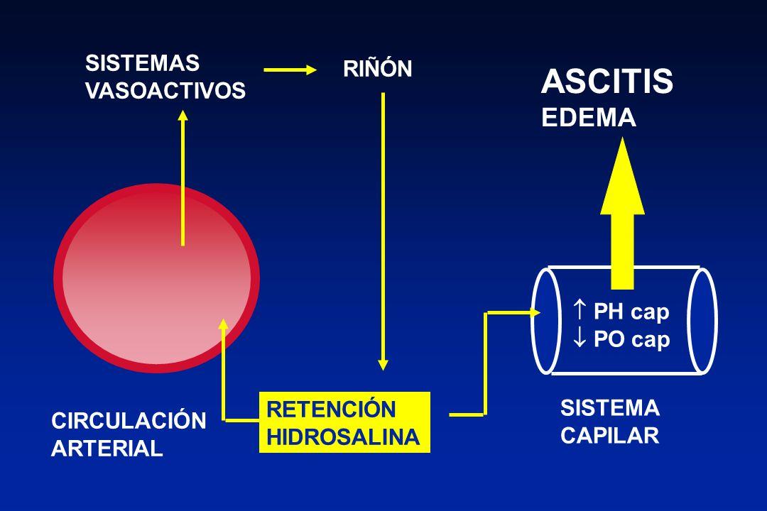 HIPERTENSIÓN PORTAL VASODILATACIÓN ARTERIAL PERIFERICA CIRROSIS HEPATICA RETENCION DE SODIO RETENCION DE AGUA VASOCONSTRICCION RENAL LEVE NO ASCITIS CIRROSIS COMPENSADA MODERADA ASCITIS CIRROSIS DESCOMPENSADA SEVERA ASCITIS filtrado glom INSUFICIENCIA RENAL (SHR)