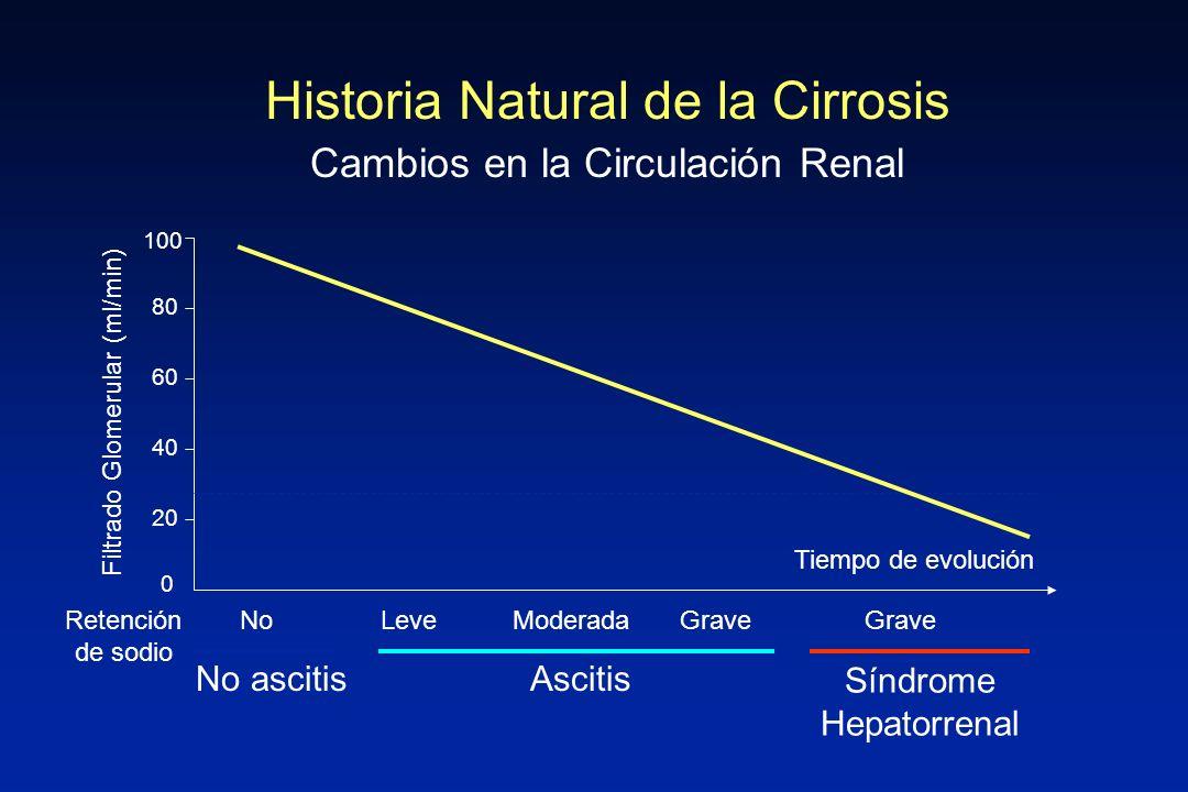 INSUFICIENCIA RENAL (creatinina sérica >1,5 mg/dL) Pérdida líquidos Fármacos nefrotóxicos NEFROTOXICIDAD Proteinuria y/o hematuria NEFROPATÍA ORGÁNICA Signos de infección INSUFICIENCIA RENAL INDUCIDA POR INFECCIÓN Ecografía renal anormal Persistencia de I renal tras resolución de infección Clínica/ Exploración Analítica Ecografía renal Diagnóstico del síndrome hepatorrenal INSUFICIENCIA PRE-RENAL SÍNDROME HEPATORRENAL
