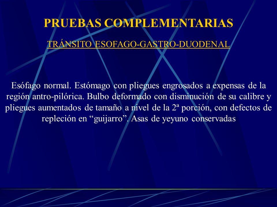 TRÁNSITO ESOFAGO-GASTRO-DUODENAL Esófago normal.