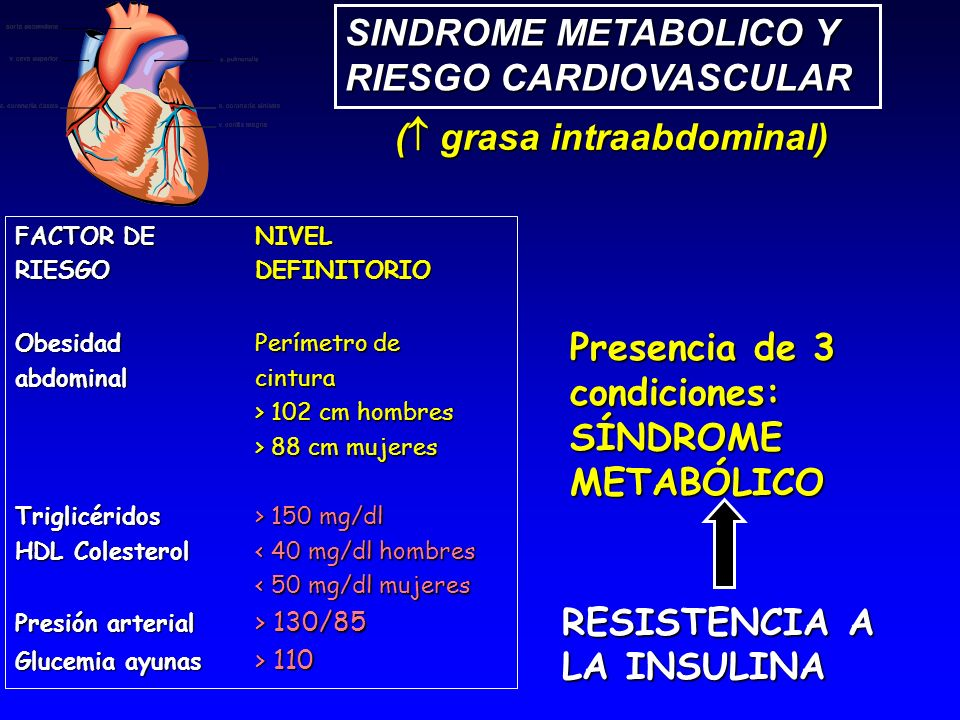 SINDROME METABOLICO Y RIESGO CARDIOVASCULAR ( grasa intraabdominal) FACTOR DENIVEL RIESGODEFINITORIO Obesidad Perímetro de abdominalcintura > 102 cm hombres > 88 cm mujeres Triglicéridos> 150 mg/dl HDL Colesterol< 40 mg/dl hombres < 50 mg/dl mujeres Presión arterial > 130/85 Glucemia ayunas > 110 Presencia de 3 condiciones: SÍNDROME METABÓLICO RESISTENCIA A LA INSULINA