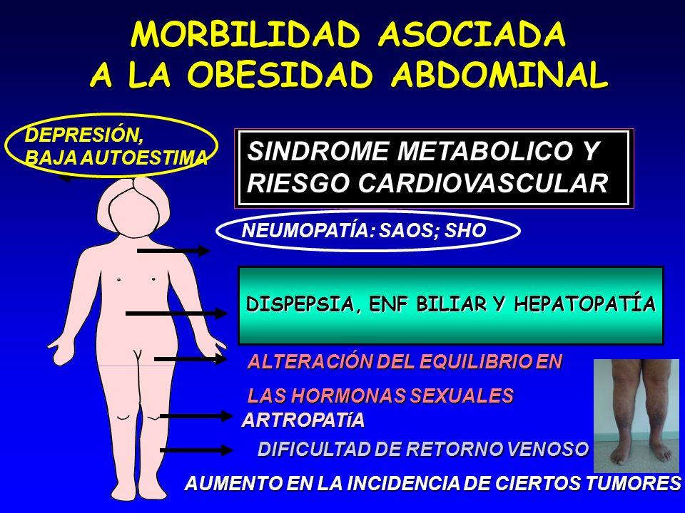 MORBILIDAD ASOCIADA A LA OBESIDAD ABDOMINAL SINDROME METABOLICO Y RIESGO CARDIOVASCULAR ALTERACIÓN DEL EQUILIBRIO EN LAS HORMONAS SEXUALES ARTROPATíA NEUMOPATÍA: SAOS; SHO DISPEPSIA, ENF BILIAR Y HEPATOPATÍA DIFICULTAD DE RETORNO VENOSO AUMENTO EN LA INCIDENCIA DE CIERTOS TUMORES DEPRESIÓN, BAJA AUTOESTIMA