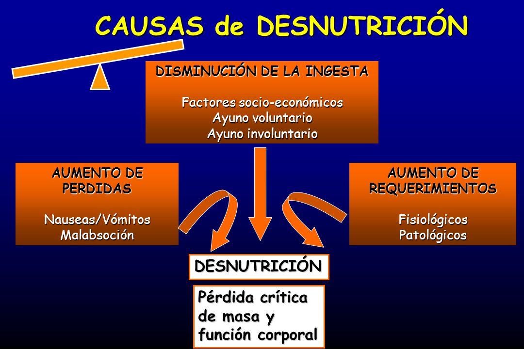 SOPORTE NUTRICIONAL: Diseñar el soporte Diseñar el soporte (VÍA DE ACCESO) Evaluar requerimientos.Evaluar requerimientos.