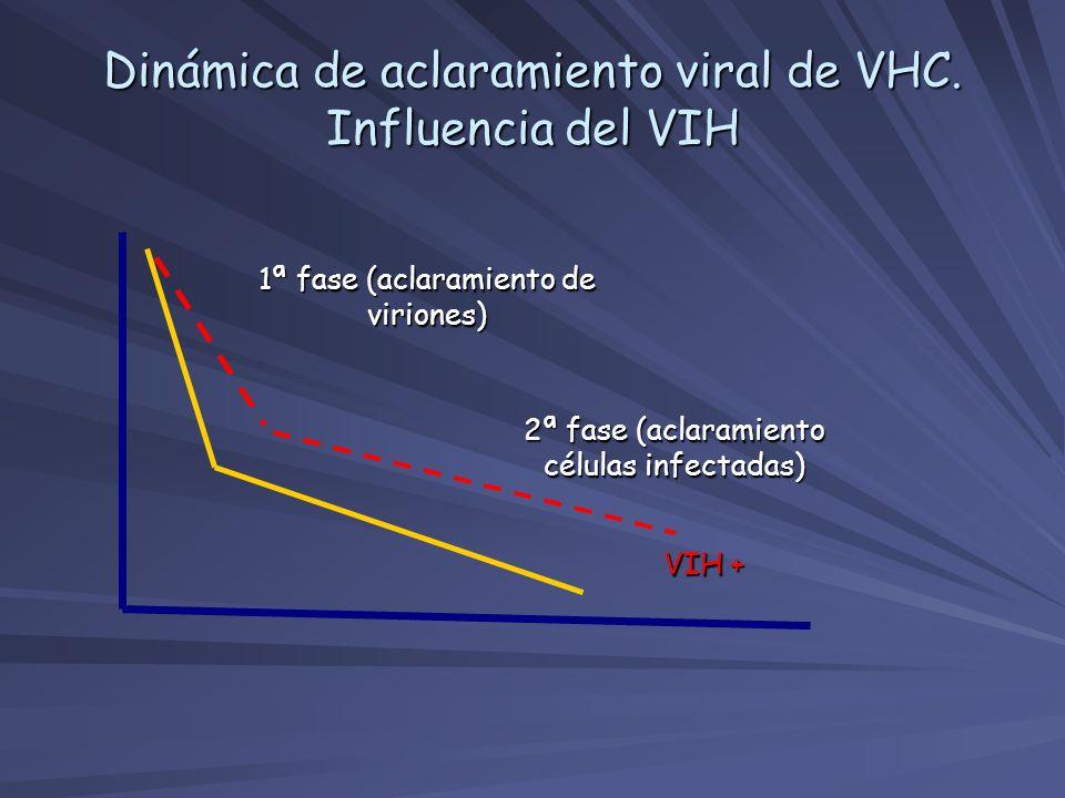 Dinámica de aclaramiento viral de VHC. Influencia del VIH 1ª fase (aclaramiento de viriones) 2ª fase (aclaramiento células infectadas) VIH +