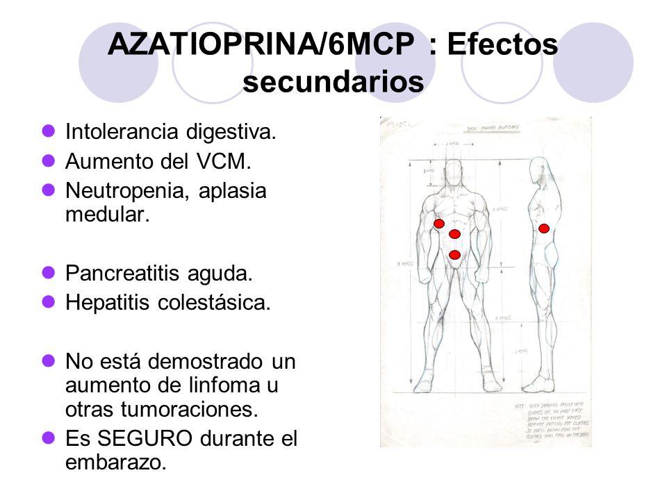 AZATIOPRINA/6MCP : Efectos secundarios Intolerancia digestiva.