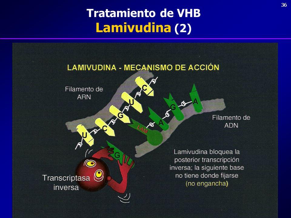 36 Tratamiento de VHB Lamivudina (2)