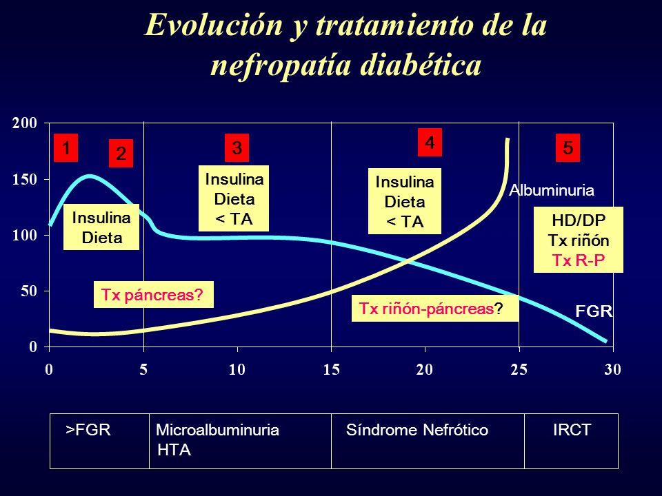 2 3 4 51 FGR Albuminuria >FGR Microalbuminuria Síndrome Nefrótico IRCT HTA Insulina Dieta Insulina Dieta < TA Tx páncreas? Insulina Dieta < TA Tx riñó