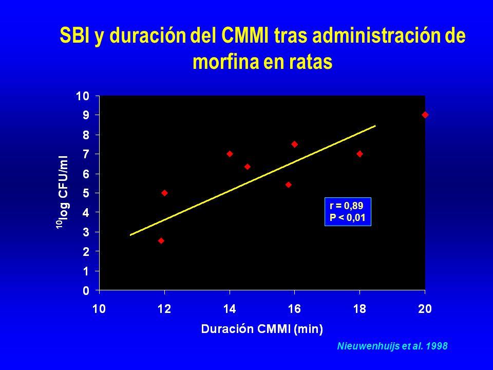 SBI y duración del CMMI tras administración de morfina en ratas Nieuwenhuijs et al.