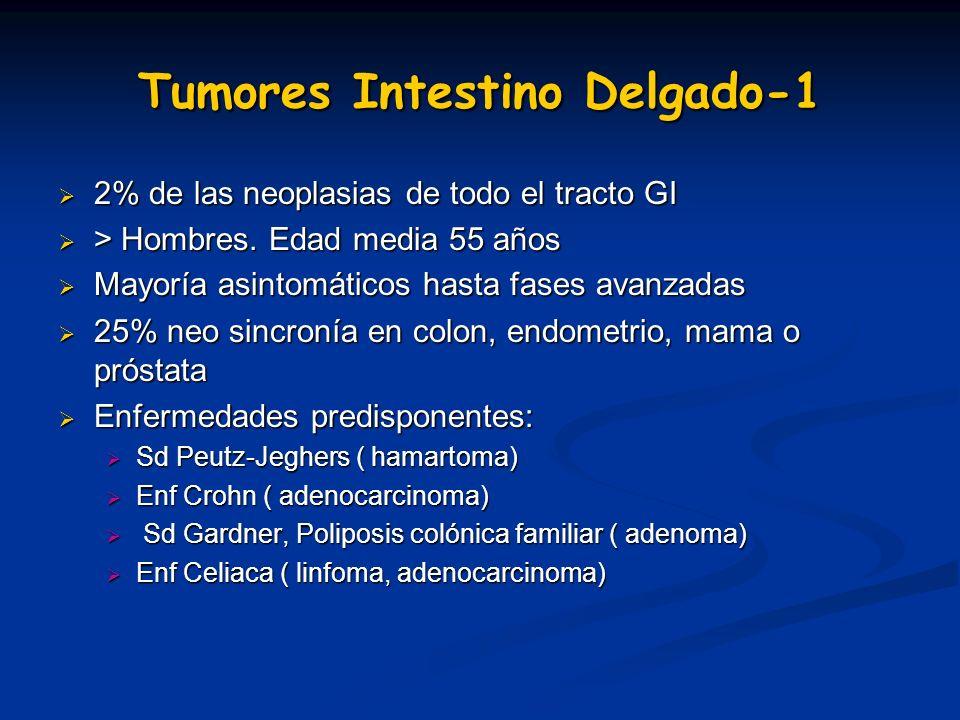 Tumores Intestino Delgado-1 2% de las neoplasias de todo el tracto GI 2% de las neoplasias de todo el tracto GI > Hombres. Edad media 55 años > Hombre