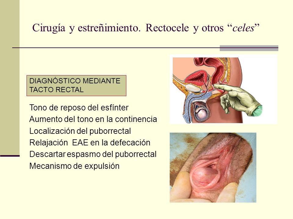DIAGNÓSTICO MEDIANTE TACTO RECTAL Tono de reposo del esfínter Aumento del tono en la continencia Localización del puborrectal Relajación EAE en la def