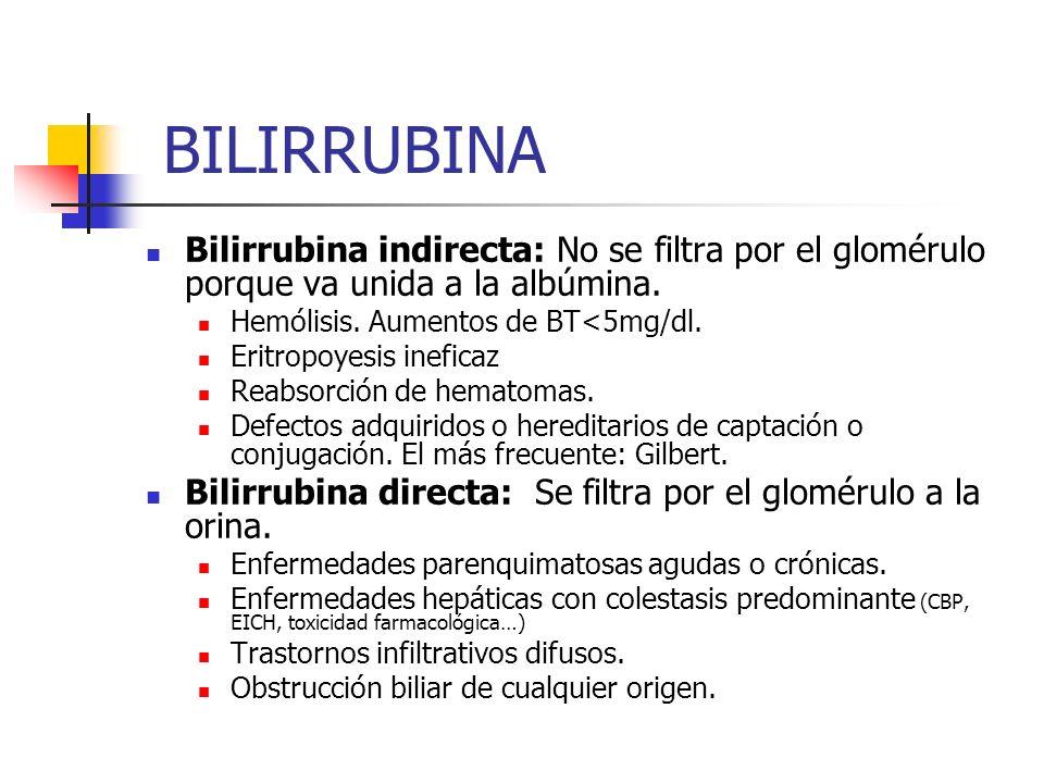BILIRRUBINA Bilirrubina indirecta: No se filtra por el glomérulo porque va unida a la albúmina. Hemólisis. Aumentos de BT<5mg/dl. Eritropoyesis inefic