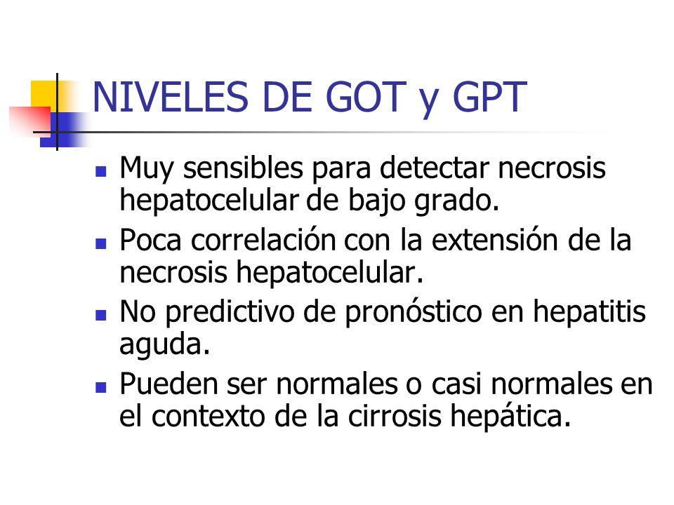 NIVELES DE GOT y GPT Muy sensibles para detectar necrosis hepatocelular de bajo grado. Poca correlación con la extensión de la necrosis hepatocelular.