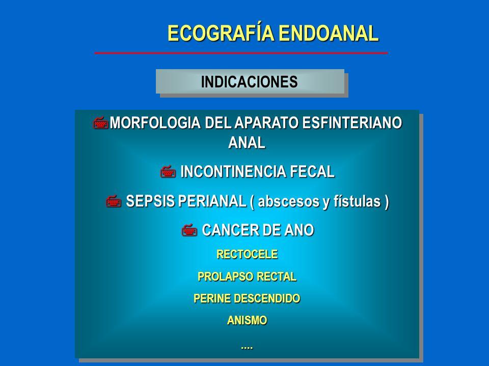 ECOGRAFÍA ENDOANAL INCONTINENCIA FECAL OBSTETRICA