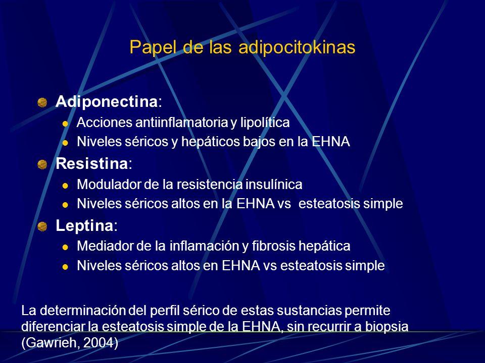 Papel de las adipocitokinas Adiponectina: Acciones antiinflamatoria y lipolítica Niveles séricos y hepáticos bajos en la EHNA Resistina: Modulador de