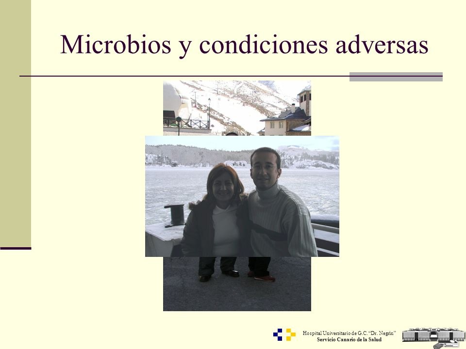 Hospital Universitario de G.C. Dr. Negrín Servicio Canario de la Salud Microbios y condiciones adversas
