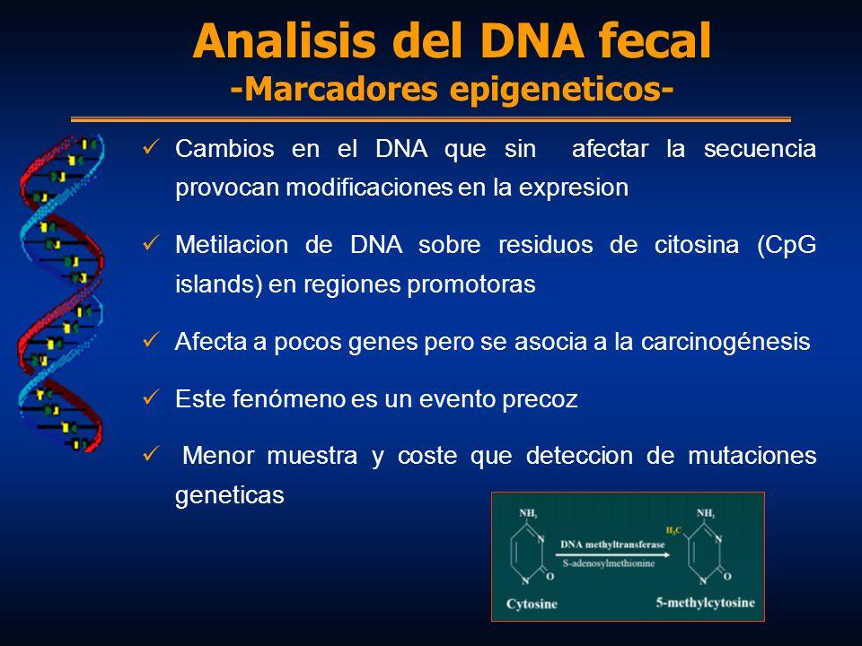 Cambios en el DNA que sin afectar la secuencia provocan modificaciones en la expresion Metilacion de DNA sobre residuos de citosina (CpG islands) en r
