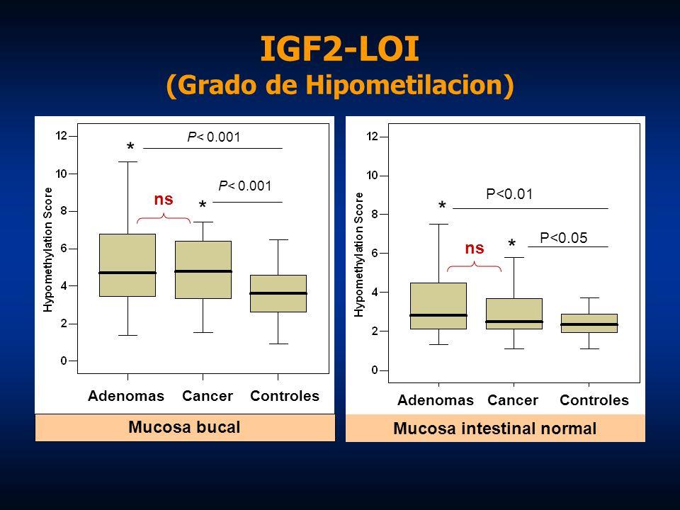 IGF2-LOI (Grado de Hipometilacion) P<0.01 * * P<0.05 Mucosa intestinal normal Adenomas Cancer Controles P< 0.001 * * Mucosa bucal P< 0.001 Adenomas Ca