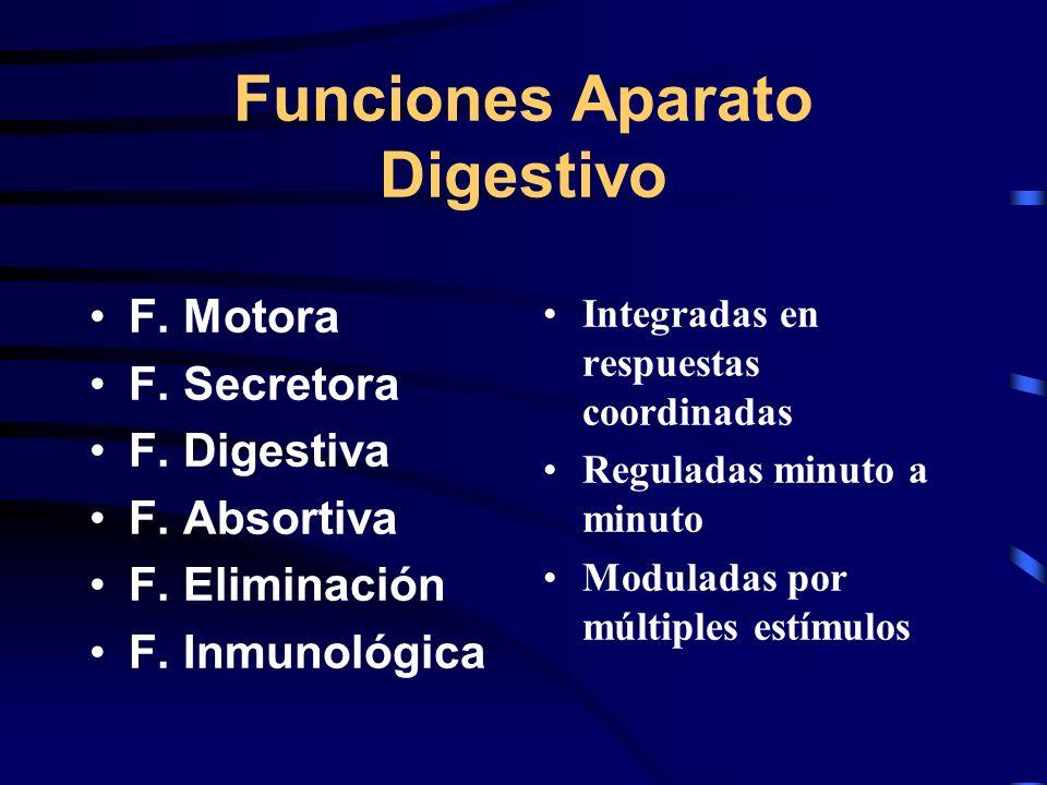 Funciones Aparato Digestivo F. Motora F. Secretora F. Digestiva F. Absortiva F. Eliminación F. Inmunológica Integradas en respuestas coordinadas Regul