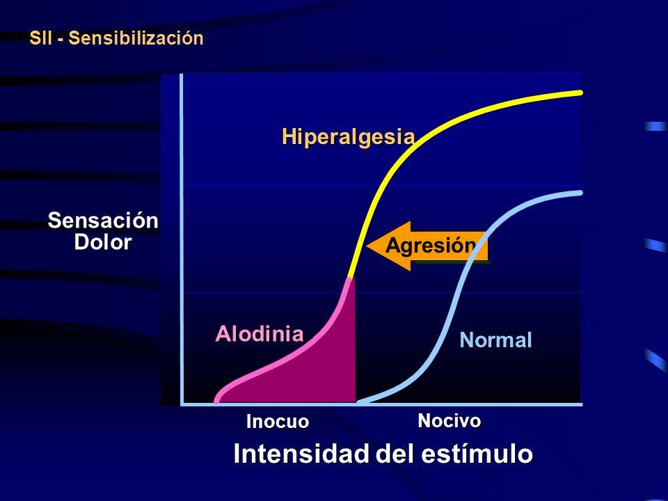 SII - Sensibilización Sensación Dolor Sensación Dolor Hiperalgesia Alodinia Inocuo Nocivo Intensidad del estímulo Normal Agresión