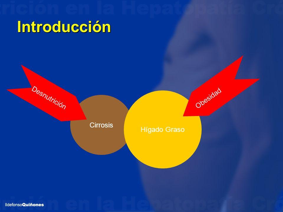 Introducción Cirrosis Hígado Graso Desnutrición Obesidad