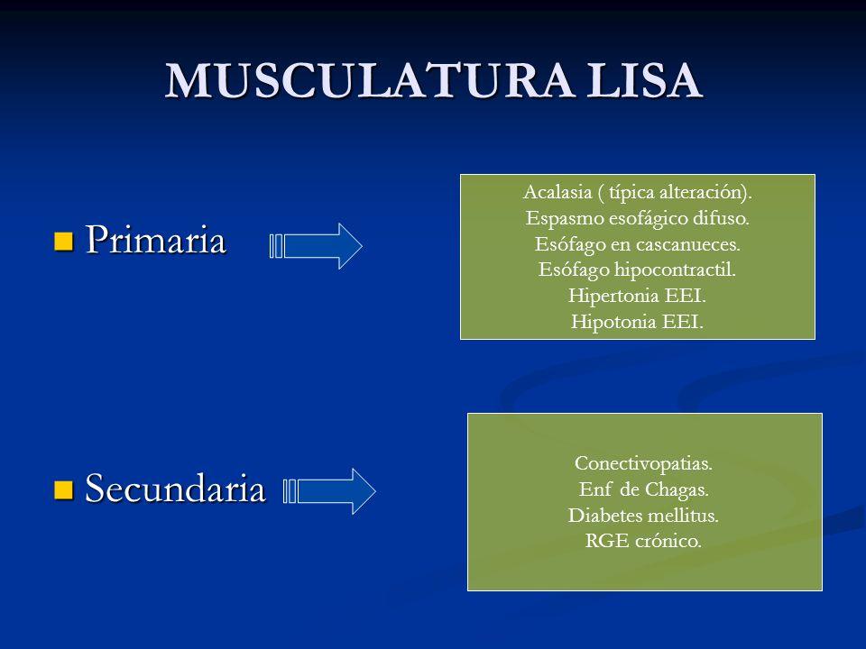 MUSCULATURA LISA Primaria Primaria Secundaria Secundaria Acalasia ( típica alteración). Espasmo esofágico difuso. Esófago en cascanueces. Esófago hipo