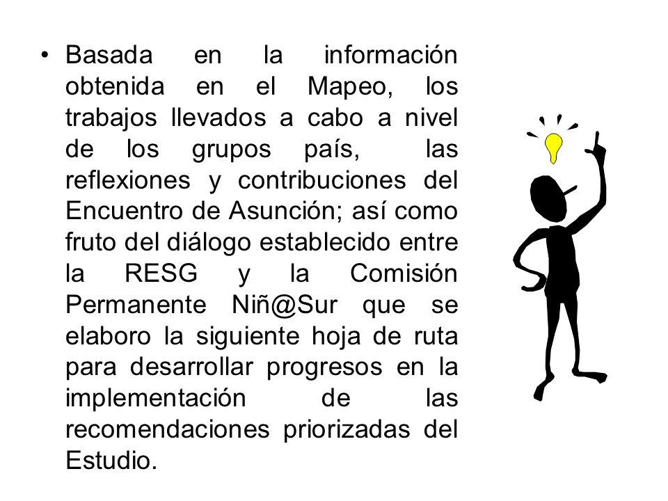 Basada en la información obtenida en el Mapeo, los trabajos llevados a cabo a nivel de los grupos país, las reflexiones y contribuciones del Encuentro
