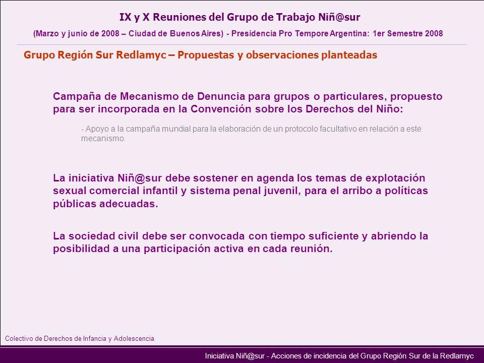 Iniciativa Niñ@sur - Acciones de incidencia del Grupo Región Sur de la Redlamyc Campaña de Mecanismo de Denuncia para grupos o particulares, propuesto