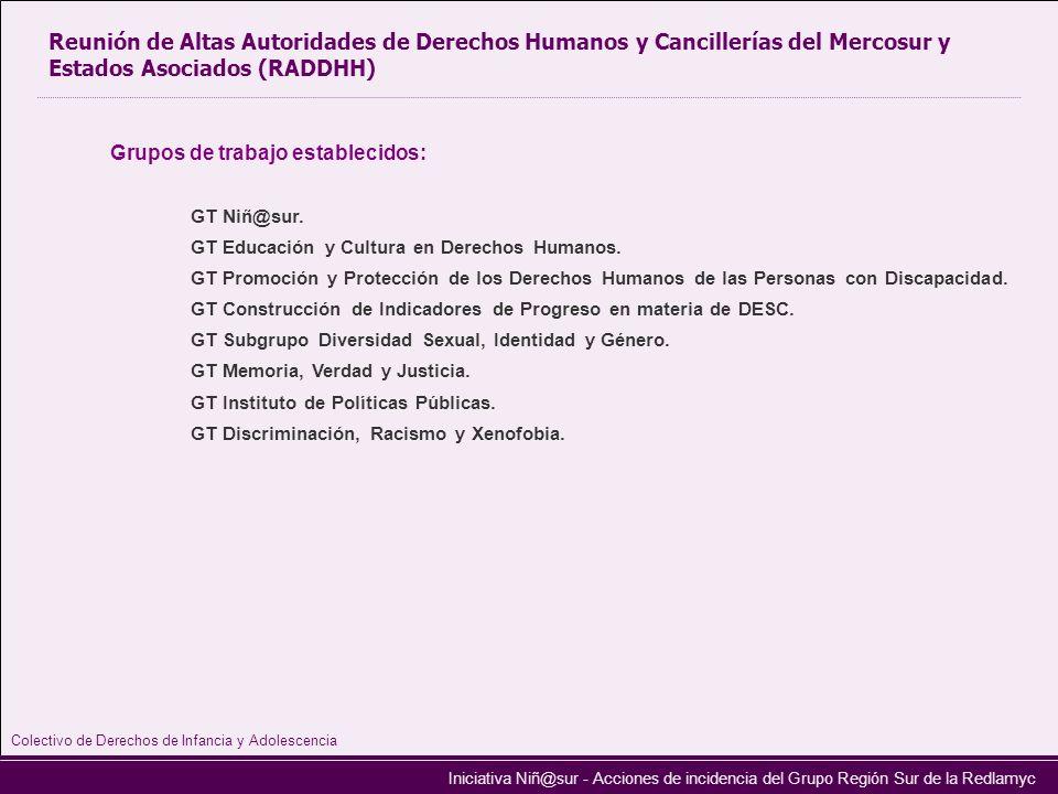 Iniciativa Niñ@sur - Acciones de incidencia del Grupo Región Sur de la Redlamyc Reunión de Altas Autoridades de Derechos Humanos y Cancillerías del Me