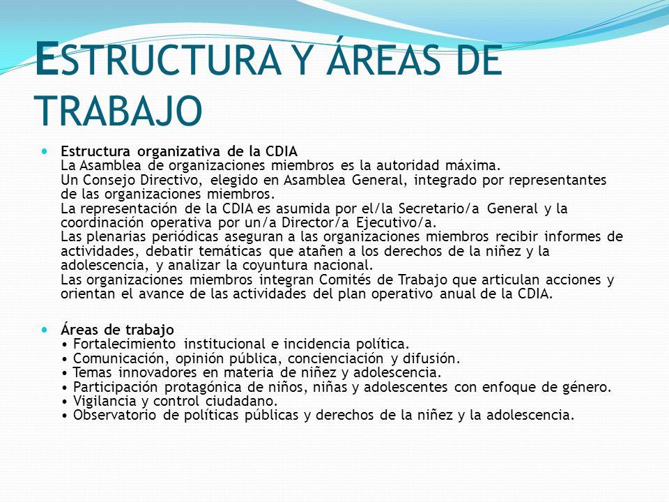 E STRUCTURA Y ÁREAS DE TRABAJO Estructura organizativa de la CDIA La Asamblea de organizaciones miembros es la autoridad máxima. Un Consejo Directivo,