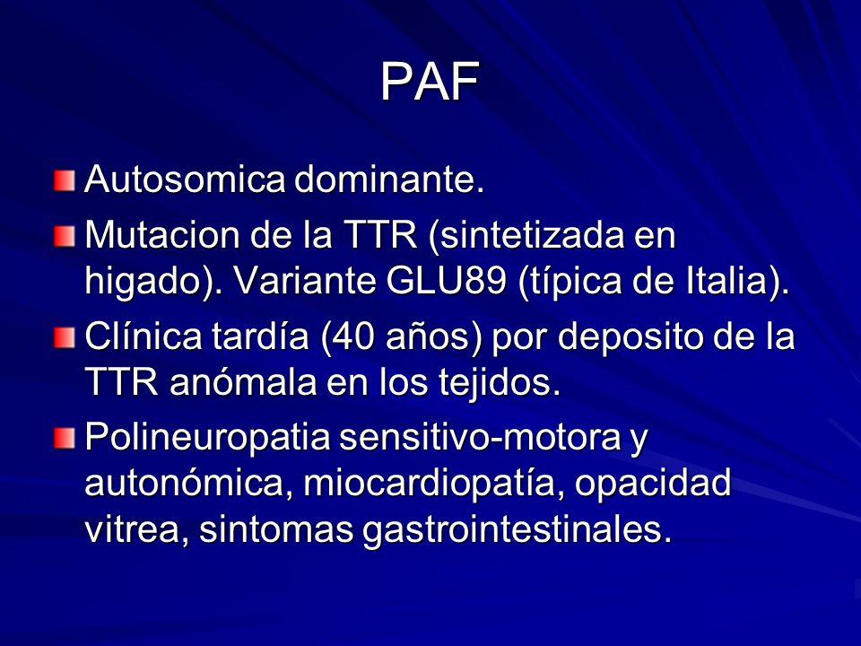 PAF Autosomica dominante. Mutacion de la TTR (sintetizada en higado). Variante GLU89 (típica de Italia). Clínica tardía (40 años) por deposito de la T