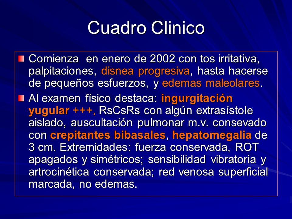 Pruebas complementarias I 2002: Hemograma dln.VSG 17 mm/h, BUN 42, creatinina 1.2 mg/dl, GOT 55, GPT 79,, troponina 0,046.