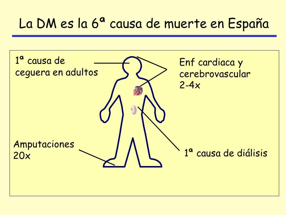 La DM es la 6ª causa de muerte en España Enf cardiaca y cerebrovascular 2-4x 1ª causa de ceguera en adultos 1ª causa de diálisis Amputaciones 20x