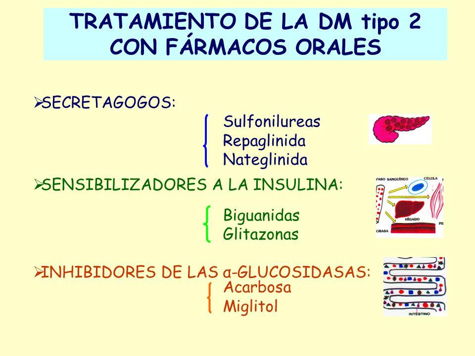 TRATAMIENTO DE LA DM tipo 2 CON FÁRMACOS ORALES SECRETAGOGOS: Sulfonilureas Repaglinida Nateglinida SENSIBILIZADORES A LA INSULINA: Biguanidas Glitazo
