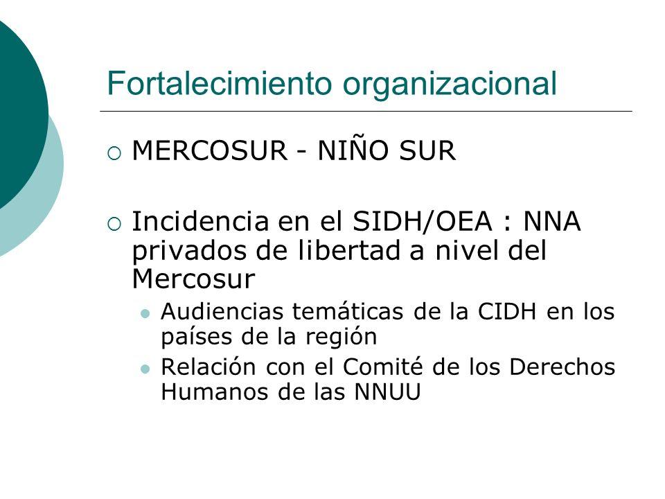 Fortalecimiento organizacional MERCOSUR - NIÑO SUR Incidencia en el SIDH/OEA : NNA privados de libertad a nivel del Mercosur Audiencias temáticas de la CIDH en los países de la región Relación con el Comité de los Derechos Humanos de las NNUU