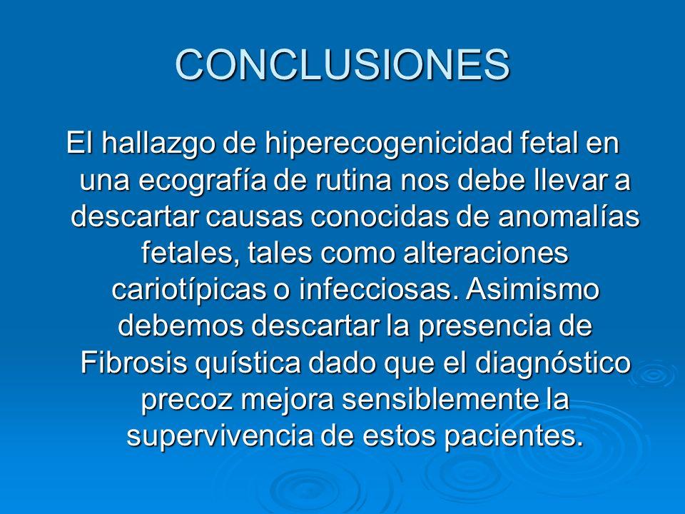 CONCLUSIONES El hallazgo de hiperecogenicidad fetal en una ecografía de rutina nos debe llevar a descartar causas conocidas de anomalías fetales, tale