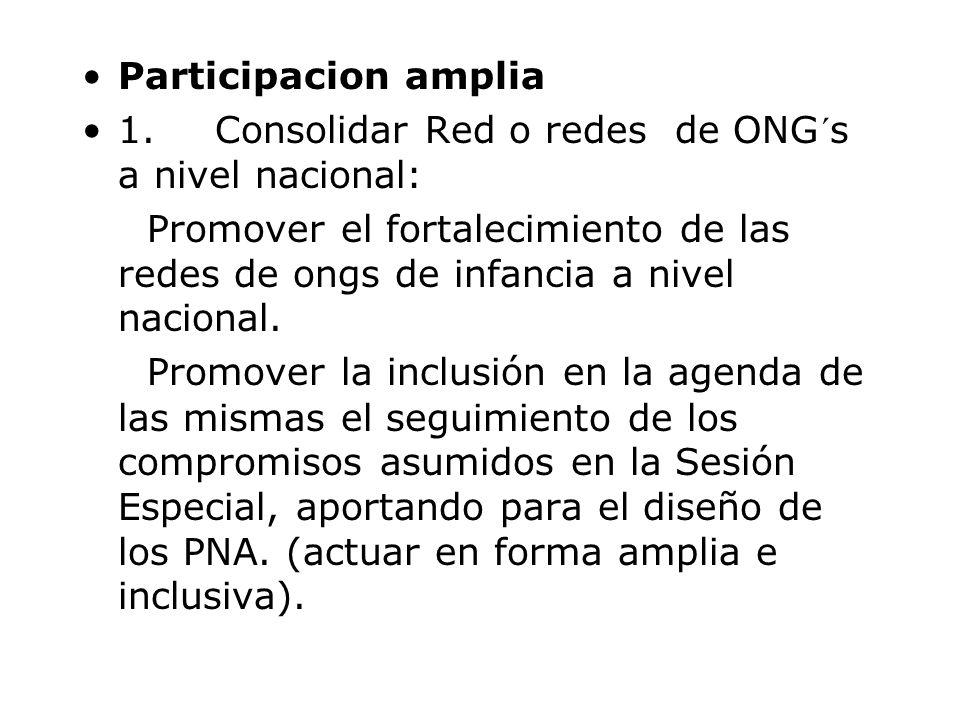 Participacion amplia 1. Consolidar Red o redes de ONG´s a nivel nacional: Promover el fortalecimiento de las redes de ongs de infancia a nivel naciona
