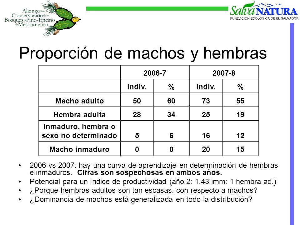 Proporción de machos y hembras 2006 vs 2007: hay una curva de aprendizaje en determinación de hembras e inmaduros.