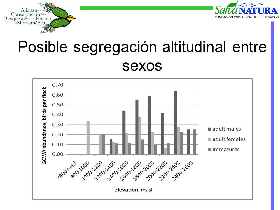 Posible segregación altitudinal entre sexos