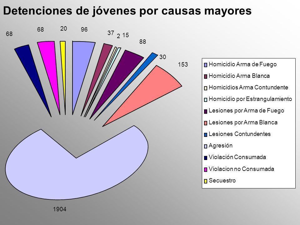 Detenciones de jóvenes por causas mayores 1904 96 37 15 2 88 153 30 68 20 Homicidio Arma de Fuego Homicidio Arma Blanca Homicidios Arma Contundente Ho