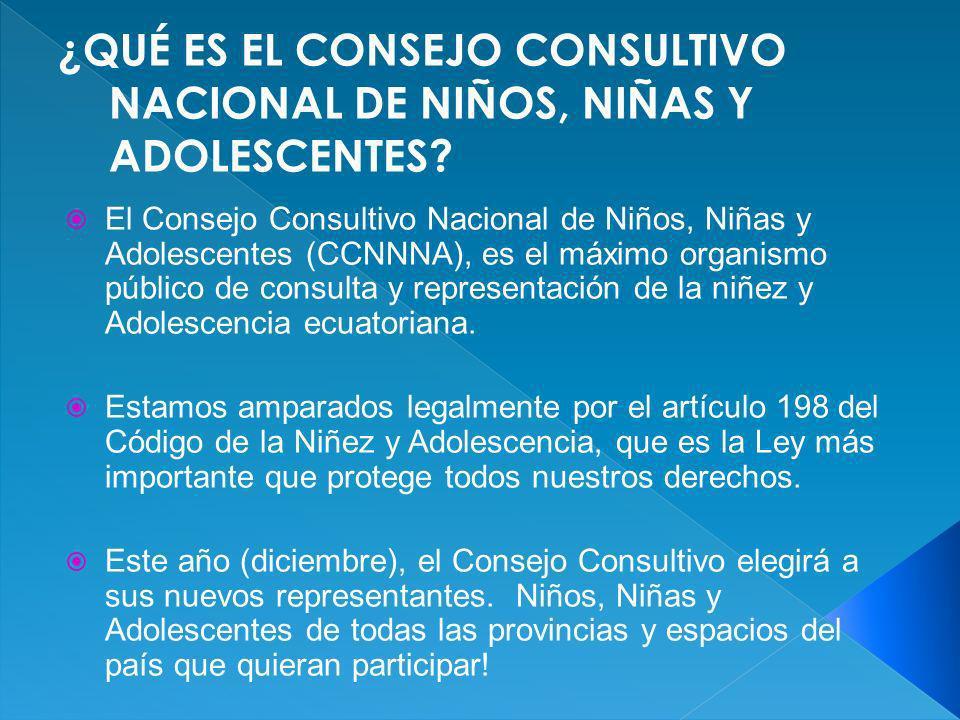 El Consejo Consultivo Nacional de Niños, Niñas y Adolescentes (CCNNNA), es el máximo organismo público de consulta y representación de la niñez y Adol