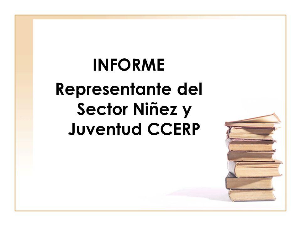 INFORME Representante del Sector Niñez y Juventud CCERP